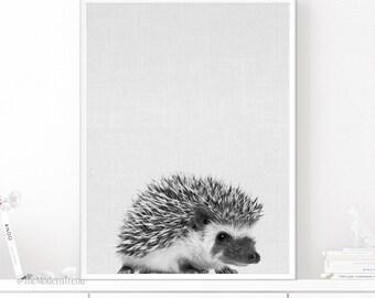 Hedgehog Print, Hedgehog Art, Hedgehog Photo, Photography Art, Animal Wall Art, Nursery Decor, Animal Printable, Photo Art, Black and White