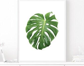 Monstera Leaf, Monstera Print, Monstera Plant, Tropical Leaf, Tropical Print, Tropical Printable, Tropical Decor, Botanical Print, Wall Art