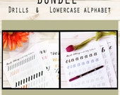 BUNDLE 1: Drills & Lowercase Alphabet for Large Brush Pens