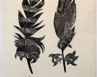 Two Feathers, wood engraving