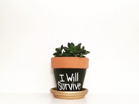 "4"" Hand Painted - I Will Survive - Terra Cotta Pot - Mini Cactus Pot - Terracotta Succulent Pot"