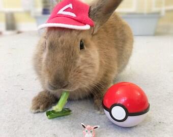 Pet Rabbit Pokemon Hat, Pet Rabbit Hat, Pet Rabbit Costume, Pet Rabbit Accessory, Pokemon, Pet Rabbit Pokemon