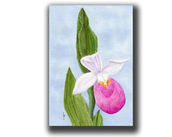 painting original watercolor SFA portrait lady slipper ONLY ONE