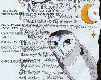 The Owl Parchment Art Digital Download *Season of the Witch* Animal Shamanism Section of the Collection from 2004