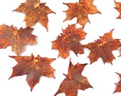 "One Copper REAL Maple Leaf Pendant - 1.75"" to 2"" wide - Asymmetrical-"