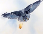 Raven Painting / Digital Print / Watercolor painting / Animal art / Bird painting / Black bird / Wildlife / Raven art Crow art / 10 x 10 w