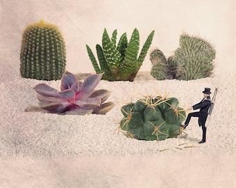 cactus print, cactus art, cactus photography, succulent print, cactus gift, cacti, Fun art, Spring decor, Nature lover, Nature decor