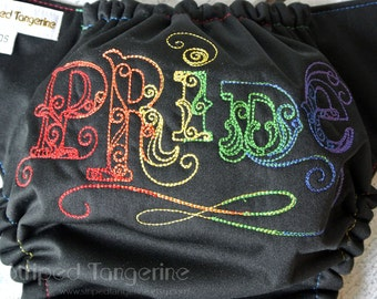 Rainbow Pride Embroidered Pocket Diaper- One Size 10-35+ lbs.