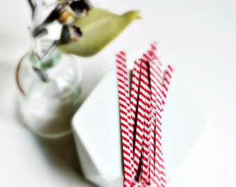 Red White Twist Ties {50} Stripe Twist Ties | Bread Twist Ties | Holiday Gift Wrap