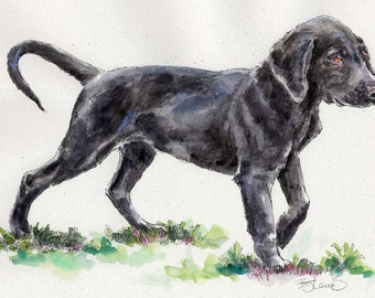FLATCOATED RETRIEVER Original Watercolor on Ink Print Matted 11x14 Ready to Frame