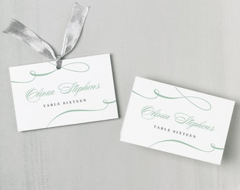 Printable Place Card Template | INSTANT DOWNLOAD | Aqua Script | Escort Card | Editable Colors | Mac or PC | Word & Pages | Flat or Folded