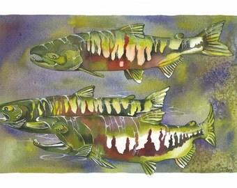 "ORIGINAL Watercolor Fish Painting / ""The Dog Pound II"" / Chum Salmon"
