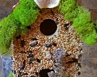 Bird Lovers!  All natural Edible Seed and Fruit Covered Bird House, Valentine's!