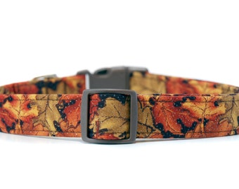 Autumn's Golden Oak Leaves ,,,Fall Autumn Harvest Custom Dog Collar