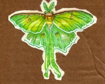 original illustration - moth 1
