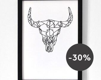 Buffalo skull . A3 Print