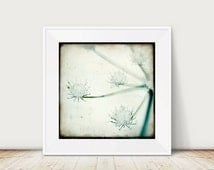 Frosted Flower - Fine Art Print Snow Plant Winter Photography Ice