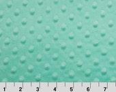 1 Yd Minky Dot Opal (Shannon Fabrics)