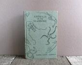 Vintage 1949 Animals of the Seashore Book / Seashore Guide Book