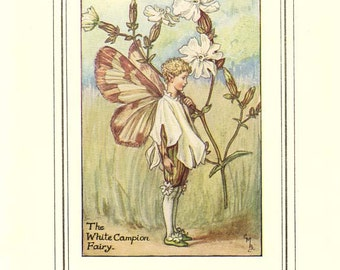 WHITE CAMPION FAIRY Original Antique Illustration c 1940 Cicely M Barker Book of the Flower Fairies