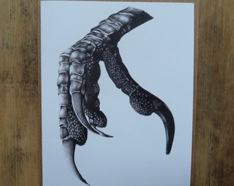 Crow Claw greetings card with brown envelope, 11 x 13.5cm, black and white illustration, bird claw, biro drawing, blank inside, bird card