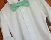 David's Bridal Spa Bowtie, Little Boy Spa Bowtie, David's Bridal Spa ringbear outfit, Spa bow tie, David's Bridal Spa Tie, Turquoise bowtie