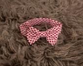 Red Hearts Valentine's Day Baby Boy Newborn Toddler Bow Tie Photo Prop