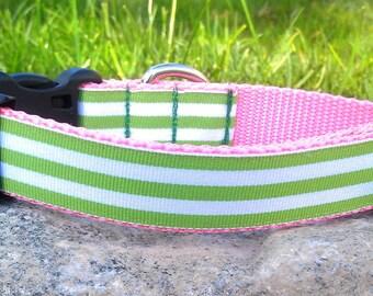 Preppy Stripes Dog Collar