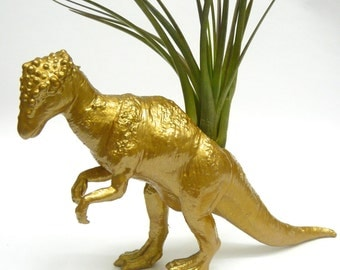 Gold Pachycephalosaurus Dinosaur Planter with Air Plant // Coworker Gift // For Her // For Him