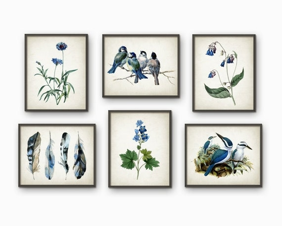 blue and green nature wall art print set of 6 blue tit. Black Bedroom Furniture Sets. Home Design Ideas