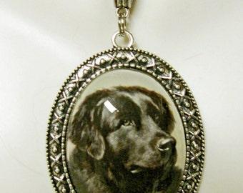 Newfoundlander pendant with chain - DAP09-136