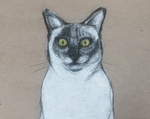 Cats Portrait, Original Pencil and acrylic Drawing, Contemporary painting, Modern Art, Acrylic mixed media. Picture of a Cat.