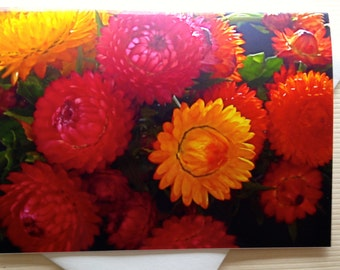 Fall Greeting Cards - Floral Photo Card - Straw Flowers