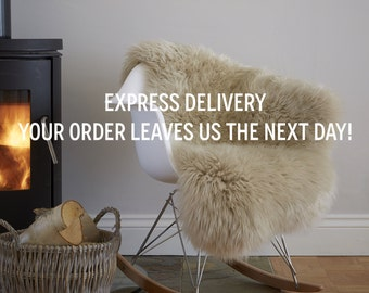 EXPRESS DELIVERY,