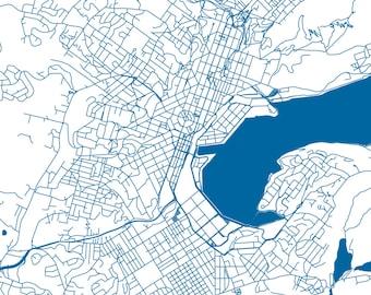 dunedin new zealand map pdf