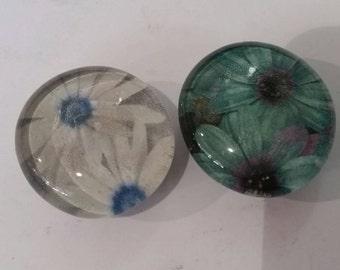 Set of 2 strong Magnets, flower, colorful, nature, floral, refrigerator magnets, glass magnets, kitchen, office, locker decor, blue teal