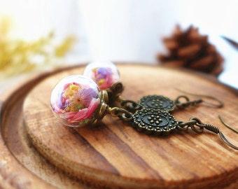 Colorful Flower Earrings, Real Flower Earrings Dried flower Jewelry Nature Earrings Woodland Earrings Botanical Earrings Glass Vial Earrings