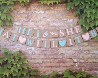 PETITE Gender Reveal, He or She What Will It Be? Banner,  Alternating Pink and Blue Letters, He Or She What Will It Be? Sign, Jute Twine