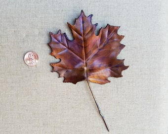 Sm. Maple leaf, flame painted copper