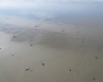 Dillion Beach