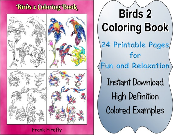 birds coloring book 24 printable coloring pages outlines Coloring Pages for Girls 10 and Up  Coloring Book Examples
