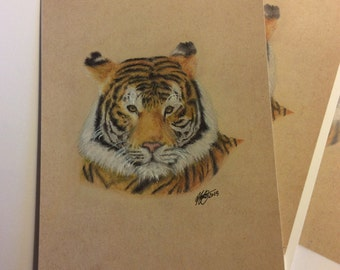 "7x5"" Bengal Tiger Drawing Hand Signed High Quality Professionally Made Prints"