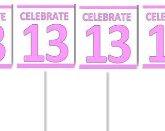 Girl's 13th Birthday Party Cupcake Decoration Toppers Picks -24pack