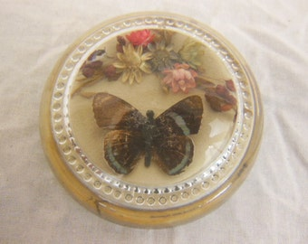 Vintage Glass Paperweight - Butterflies and Flowers