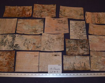 Birch Bark Sheets, 19 Pieces, Lot #3, Approx. 8 sq. ft.