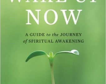 Wake Up Now A Guide to the Journey of Spiritual Awakening