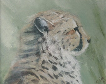 Cheetah Cub I | original painting | pastel | soft pastel | chalk pastel | cheetah | wildlife | wildlife art | animal | Tracy Butler