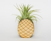 Pineapple air plant holder. Air plant holder. Air plant. Tropical decor. Pineapple decor. Air plant terrarium. Planter.  Mini planter.