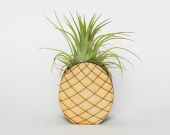 Pineapple air plant holder - air plant holder - air plant display - houseplant - housewarming - home decor - wedding gift - air plant