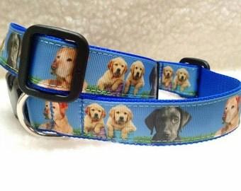 Labrador Retriever Dog Collar